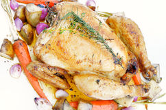 Roast chicken with vegetable Royalty Free Stock Photo