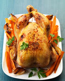 Roast chicken. And vegetables on a white plate Stock Image