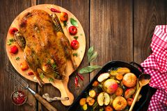 Roast Christmas duck with apples. Roast Christmas duck with thyme and apples stock image
