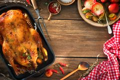 Roast Christmas duck with thyme and apples Royalty Free Stock Image