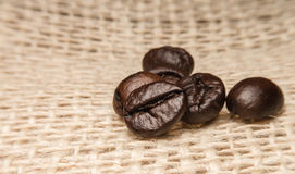 Roast coffee beans. Isolated on sack background Royalty Free Stock Photography