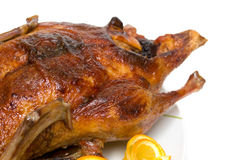 Roast duck. On a white background Royalty Free Stock Photography