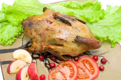 Roast duck with apples, cranberries and tomatoes close up stock images