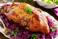 Roast duck with apples Royalty Free Stock Image