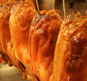 Roast duck on closeup Royalty Free Stock Photography