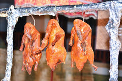 Roast duck, delicious food , chinese food Stock Photos