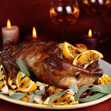 Roast duck with orange. Anise and ginger Royalty Free Stock Image