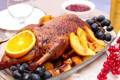 Roast duck with orange Royalty Free Stock Photo