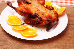 Roast duck with oranges. For christmas holidays Stock Images