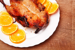 Roast duck with oranges. For christmas holidays Royalty Free Stock Image