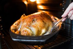 Roast duck in the oven. Closeup Stock Photo