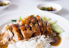 The roast duck over rice Royalty Free Stock Images