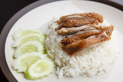 Roast Duck over Rice with cucumber. In plate Stock Photos