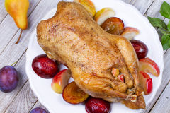 Roast duck with plums and apples. Royalty Free Stock Photos