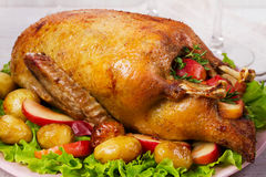 Roast duck with potato, apples, salad, thyme and rosemary. Two glasses of red wine Royalty Free Stock Photos