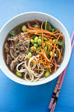 Roast duck ramen noodles. Roast duck ramen with shredded carrots, soybeans in broth stock photography