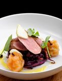 Roast duck, red cabbage and dry fruits Stock Image