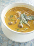 Roast duck with red curry. Stock Images