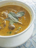Roast duck with red curry. Royalty Free Stock Image
