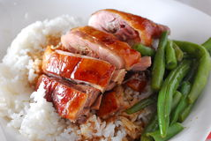 Roast duck rice Royalty Free Stock Photos