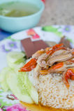 Roast duck with rice Stock Photo