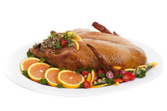 Roast Duck. Roasted duck on a plate with salads oranges and vegetables,on a white background Royalty Free Stock Image