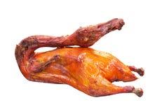 Roast duck Stock Image