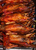 Roast Duck,sold in the market. Stock Image