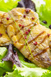 Roast Fish and Balsamic Sauce Royalty Free Stock Photos