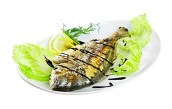 Roast fish on the white Stock Photography