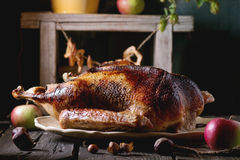 Roast goose with apples Royalty Free Stock Photography