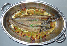 Roast  herring fishes in a pot Stock Photos