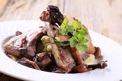 Roast lamb chops Stock Images