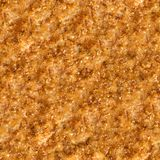 Roast Meat Surface. Seamless Tileable Texture. Stock Images
