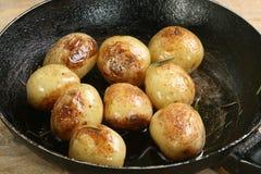 Roast new potatoes Royalty Free Stock Image