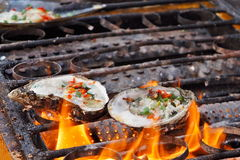 Roast oyster Royalty Free Stock Image