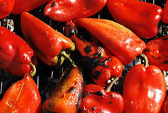 Roast peppers. Close up of the roast red pepper on grill Stock Image