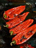 Roast peppers Royalty Free Stock Images