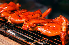 Roast pig's trotters Royalty Free Stock Image