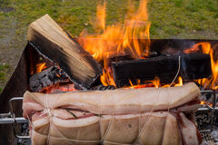 Roast pig on a spit. That runs on a barbecue outdoor Stock Images