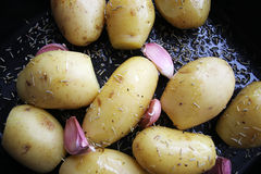 Roast Potato. Potatos ready to roast with olive oil, garlic and rosemary Stock Photos