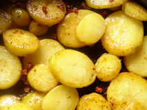 Roast potatoes. Potatoes and bacon in the pan Stock Photos