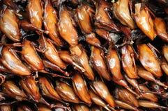 Roast quail  background Royalty Free Stock Image