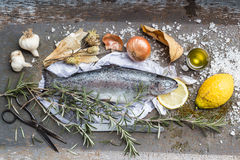 Roast Rainbow Trout Ingredients Still Life Royalty Free Stock Image