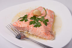 Roast salmon fillet. With sauce, garlic and parsley Royalty Free Stock Photography