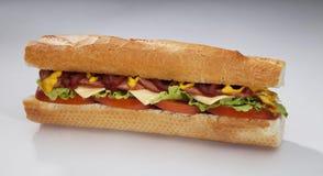 Free Roast Sandwich Royalty Free Stock Image - 21407956