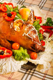 Roast suckling pig Royalty Free Stock Images