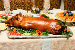 Roast suckling pig Royalty Free Stock Photography