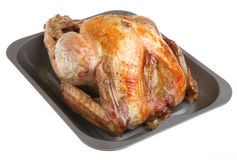 Roast Turkey. Freshly roasted turkey in non-stick baking tray Royalty Free Stock Photos