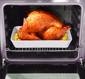 Roast turkey. Appetizing roast turkey and potatoes in the oven Royalty Free Stock Photos